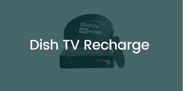 Best Dish TV Recharge Plans, Packs, Offers 2021